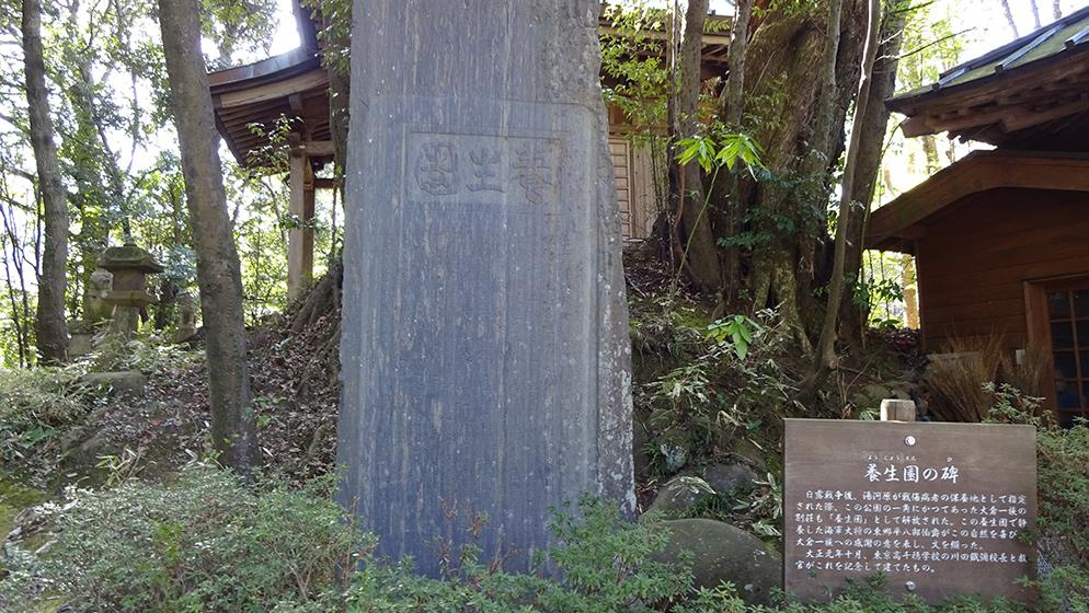養生園の碑
