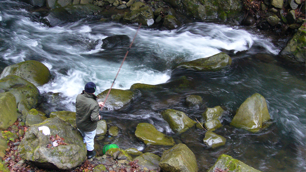 Niizaki-gawa Kokusai Yamame Masu Tsuriba (mountain stream fishing)